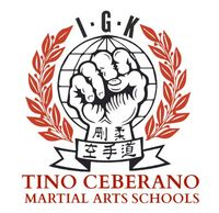 Tino Ceberano Martial Arts Academy - Reviews , Scam RipOff Reports , Complaints and business details