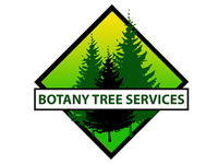 Tree Surgeons & Arborists In Bexley - Botany Tree Services