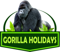 Tours In Melbourne - Gorilla Holidays