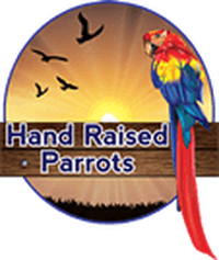 Hand Raised Parrots - Reviews , Scam RipOff Reports , Complaints and business details
