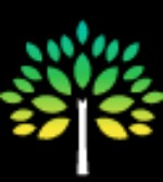 Black Forest Tree Service - Local Business Directory Listing