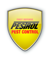 Pest Control In Alexandria - Pestrol