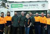 Home Services In Brisbane City - Brisbane Tree Experts