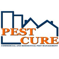 Pest Control In Booragoon - Pest Cure