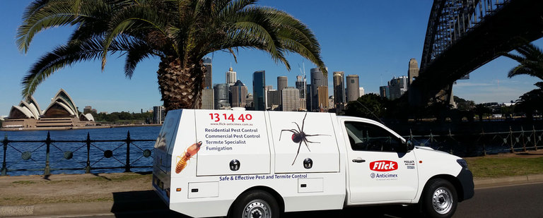 Photo Gallery - Flick Pest Control Sydney