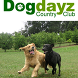 Pet Groomers In Warrandyte - Dogdayz Country Clubs