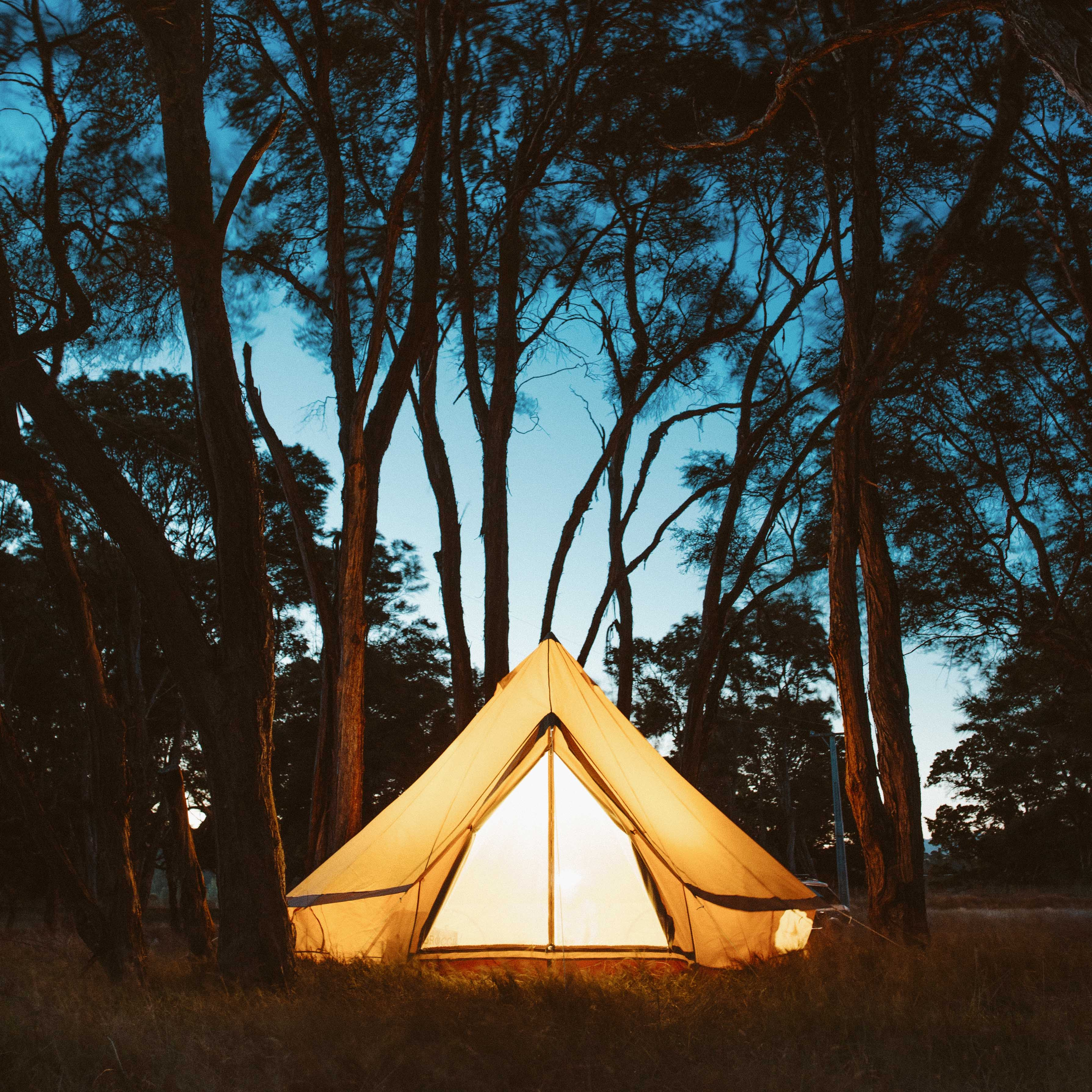 Earth Conscious Camping 101